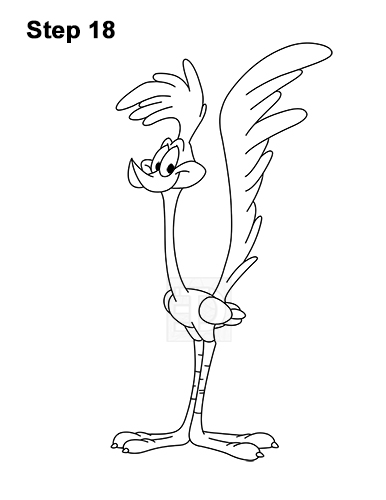 How to Draw Road Runner Looney Tunes 18