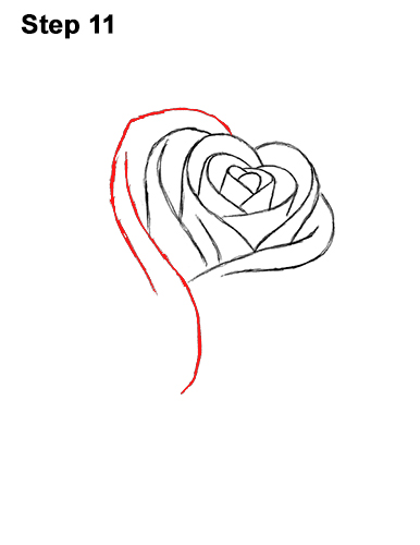 How to Draw Red Rose 11