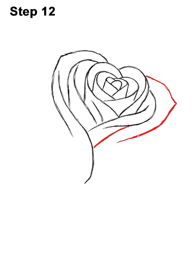 How to Draw Red Rose 12