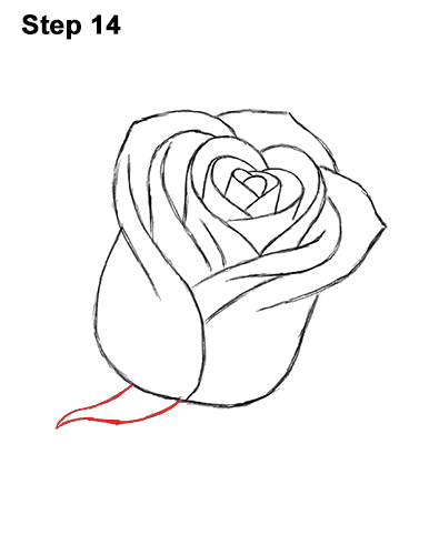How to Draw Red Rose 14