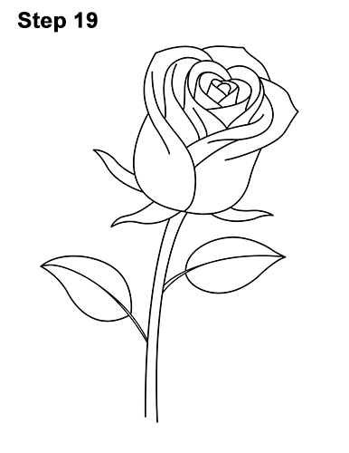 How to Draw Red Rose 19