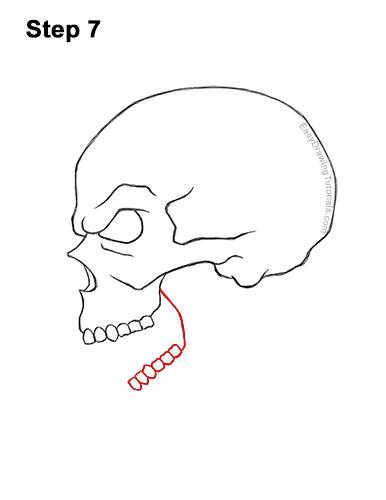 How to Draw a Scary Creepy Evil Skull Side View Halloween 7