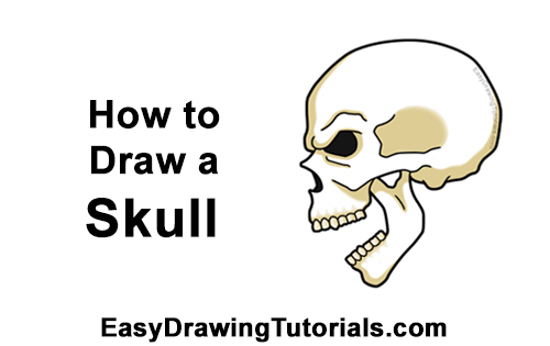 How to Draw a Scary Creepy Evil Skull Side View Halloween