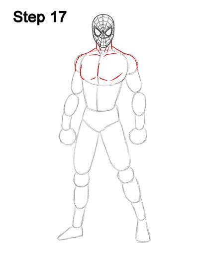 Draw Spider-Man Body 17